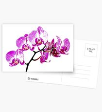 Orchid Postcards