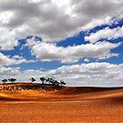 Dimboola parched paddock. by Victor Pugatschew