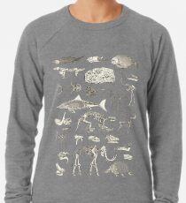 Paläontologie-Illustration Leichtes Sweatshirt