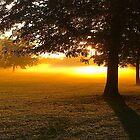 Lever de soleil au parc by AHELENE