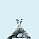 Rabbit 24 von froileinjuno