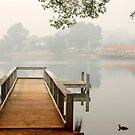 Lake Daylesford by Victor Pugatschew