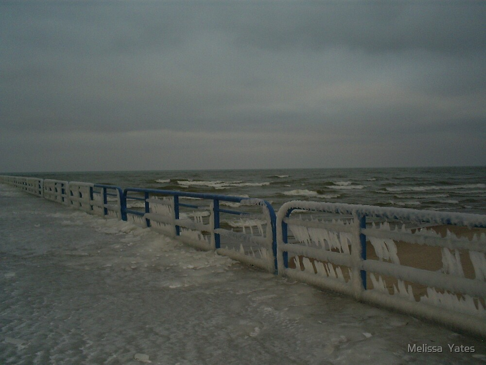 Icy Waves by Melissa  Ousley