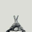 Rabbit 23 von froileinjuno