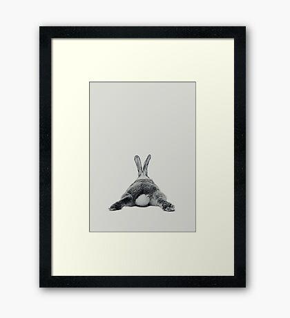 Rabbit 23 Framed Art Print