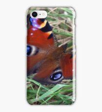 Aglais Io iPhone Case/Skin