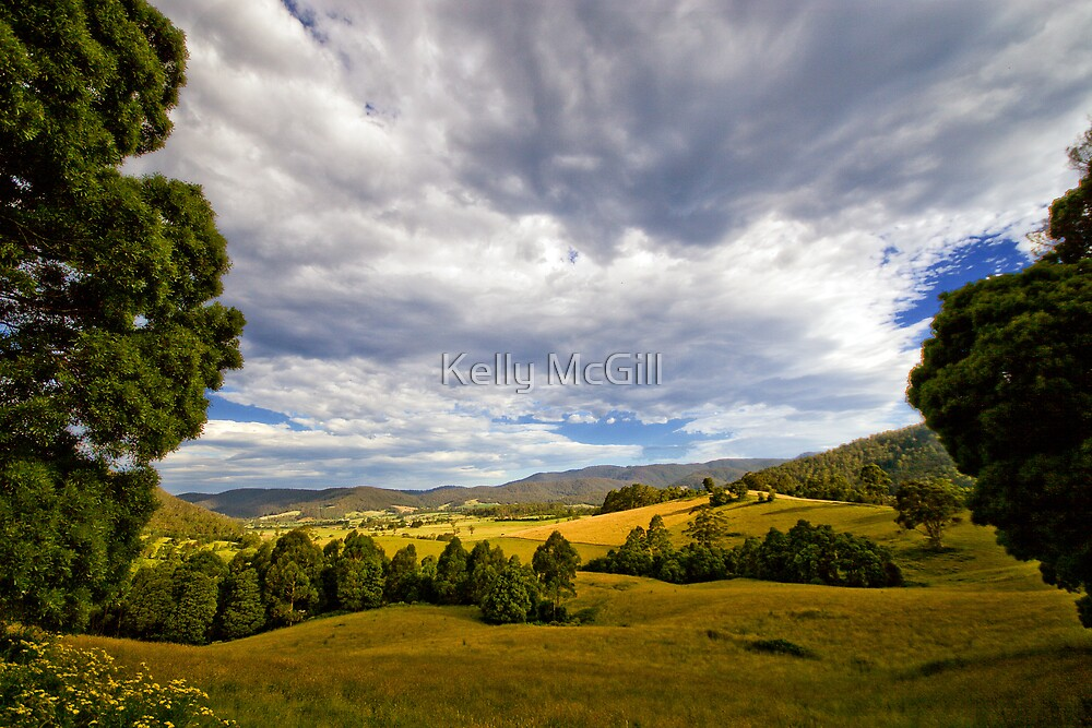 Pyengana Valley, Tasmania by Kelly McGill