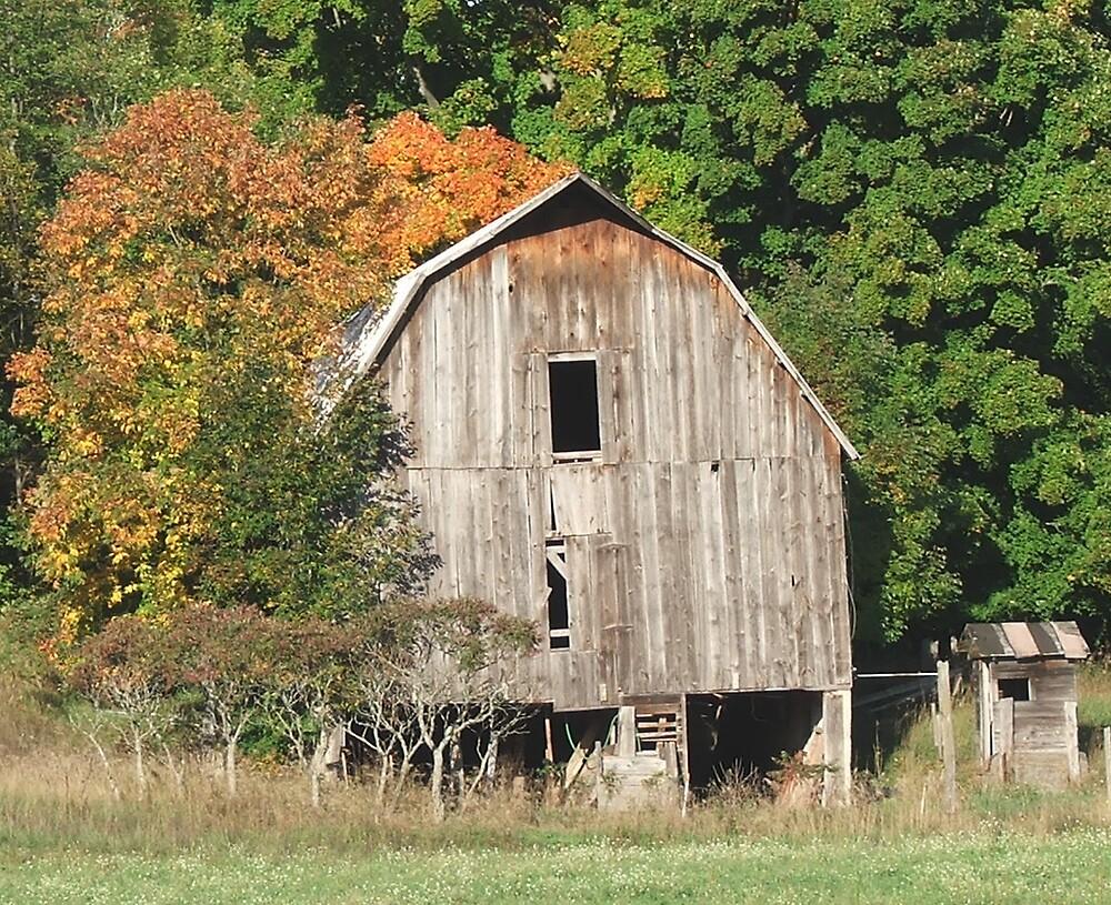 Autumn Harvest by burk28