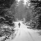 Winter walk by Mark Williams