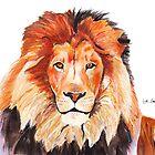 Lion by Luke Tomlinson