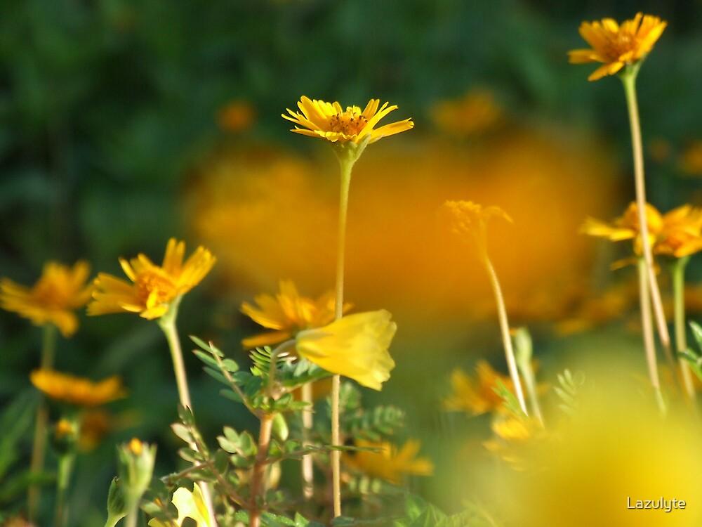Secret Garden by Lazulyte