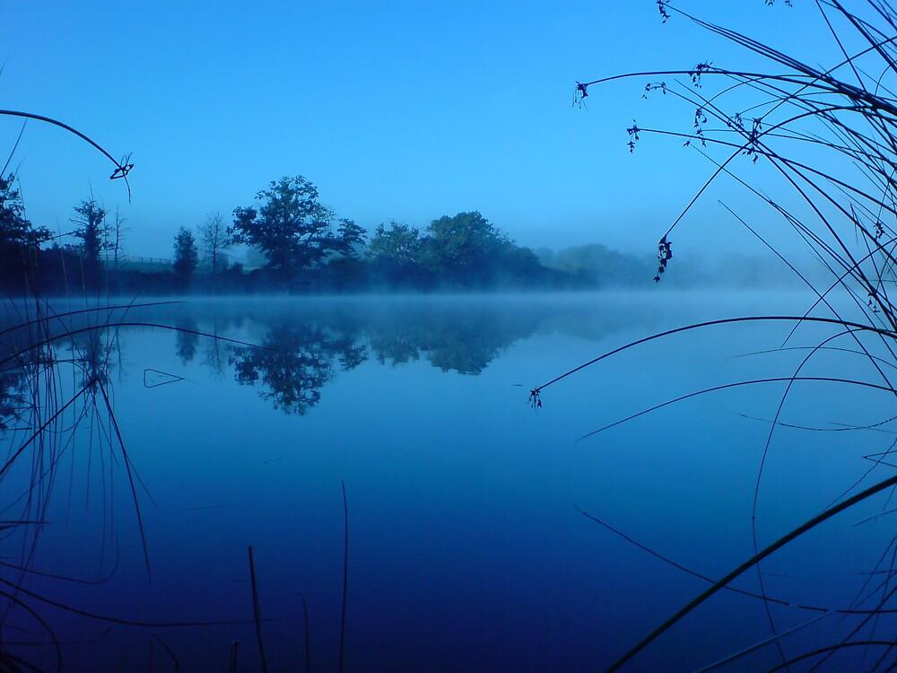 Misty Blue by DanGoodwin