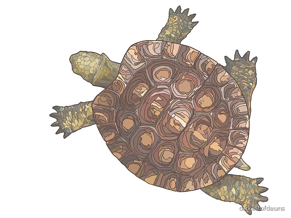 Turtle by darkestofdawns