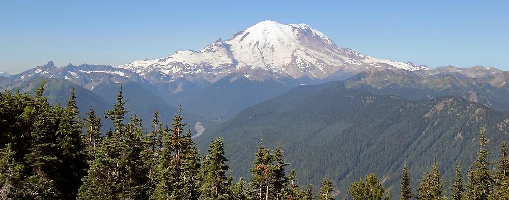 Mt. Rainier by FedbyNatureArt