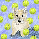 Miss Caroline the Cairn Terrier is Obsessed About Fetching Tennis Balls by melasdesign