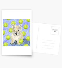 Miss Caroline the Cairn Terrier is Obsessed About Fetching Tennis Balls Postcards