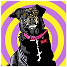 Hypno Doggie by melasdesign