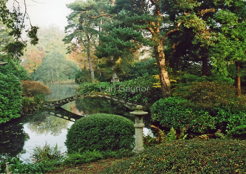 Picturesque Garden  by Carl Gaynor