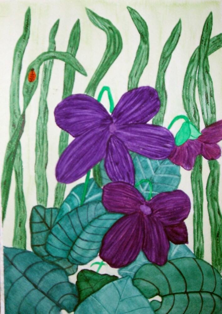 Violets by jillpedersen