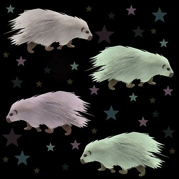 Porcupine stars by chihuahuashower