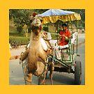 We'll take you to Taj Mahal by Lidiya