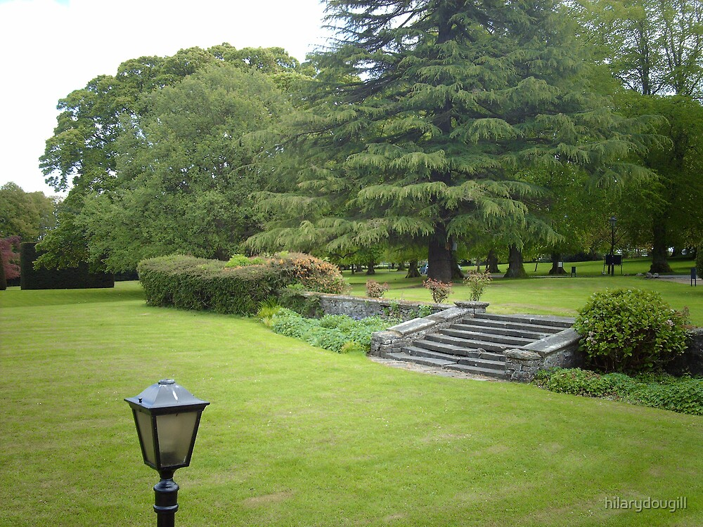 English Hotel garden by hilarydougill