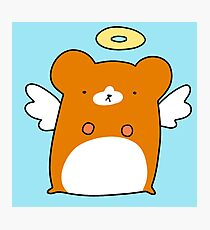Angel Hamster Photographic Print