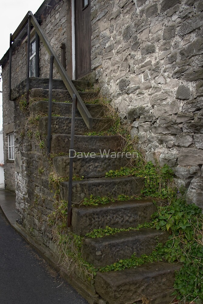 Steps by Dave Warren
