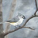 Tufted Titmouse - Acrylic by skidgelstudios