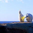 Cheeky Cockatoo's by Matt  Lauder
