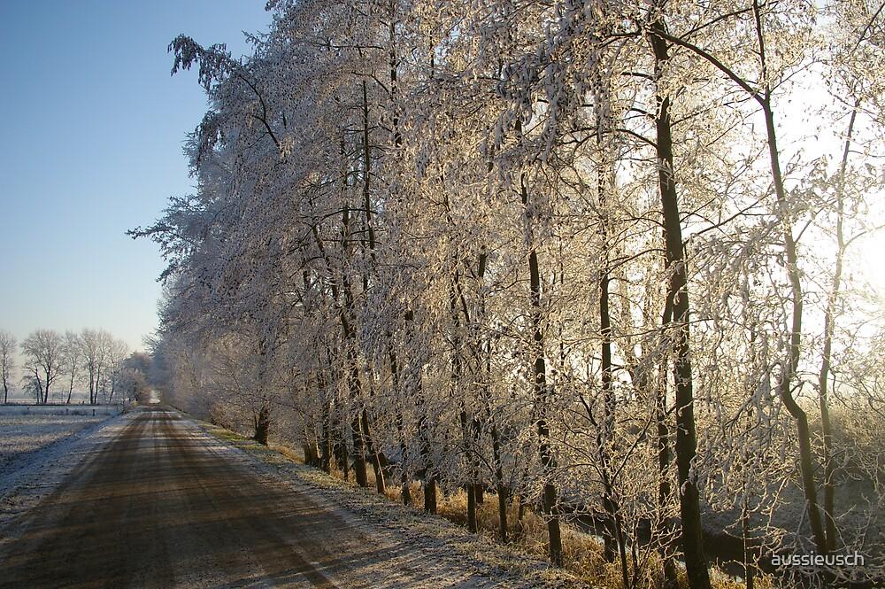 Frosty Trees by aussieusch