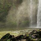 Whangarei Falls..........a misty veil.........!! by Roy  Massicks
