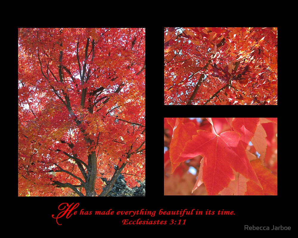 Autumn Leaves by Rebecca Jarboe