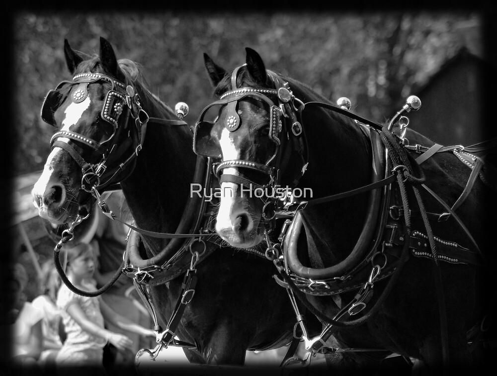 Horses Pulling Hearse by Ryan Houston