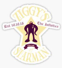 Ziggy's Ghost of Starman  Sticker
