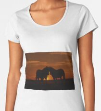 Horses At Sunset Women's Premium T-Shirt