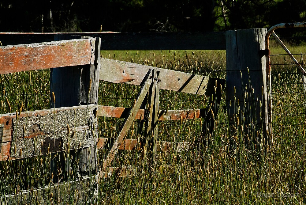 Bungendore Fence by Bryan Cossart