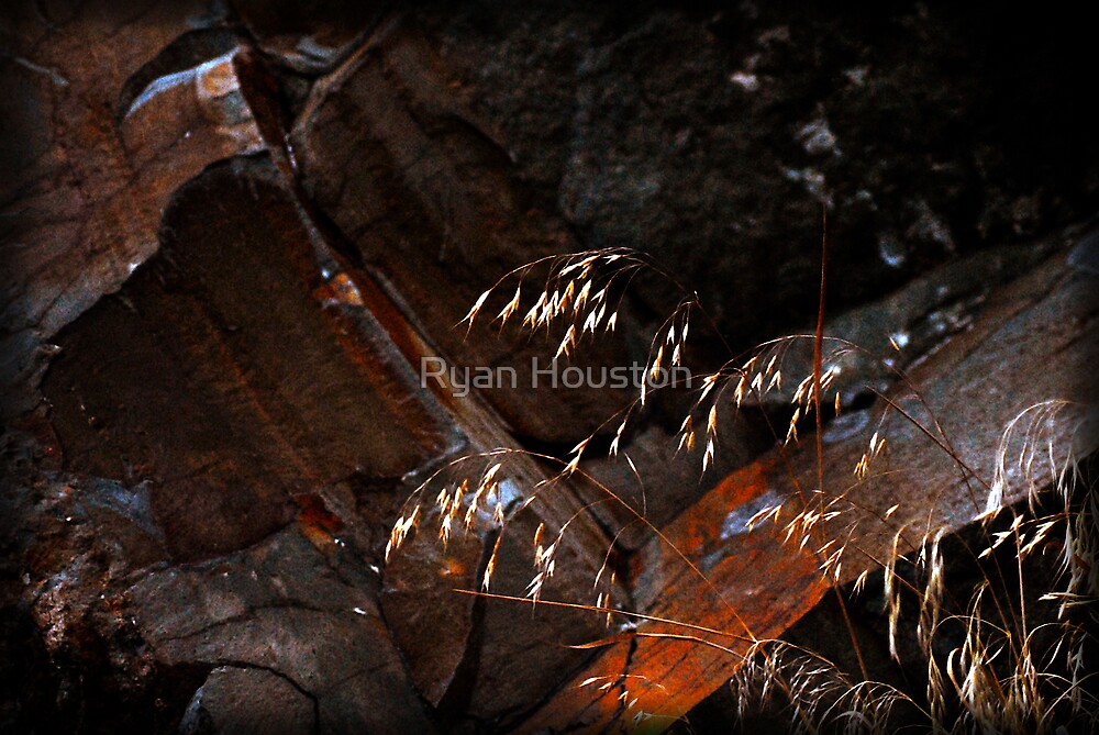 Rusted Rocks by Ryan Houston