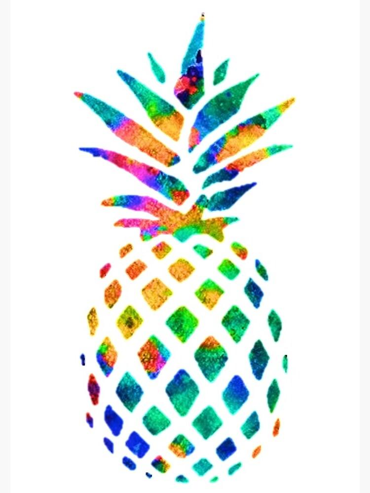 Rainbow Pineapple by erinaugusta