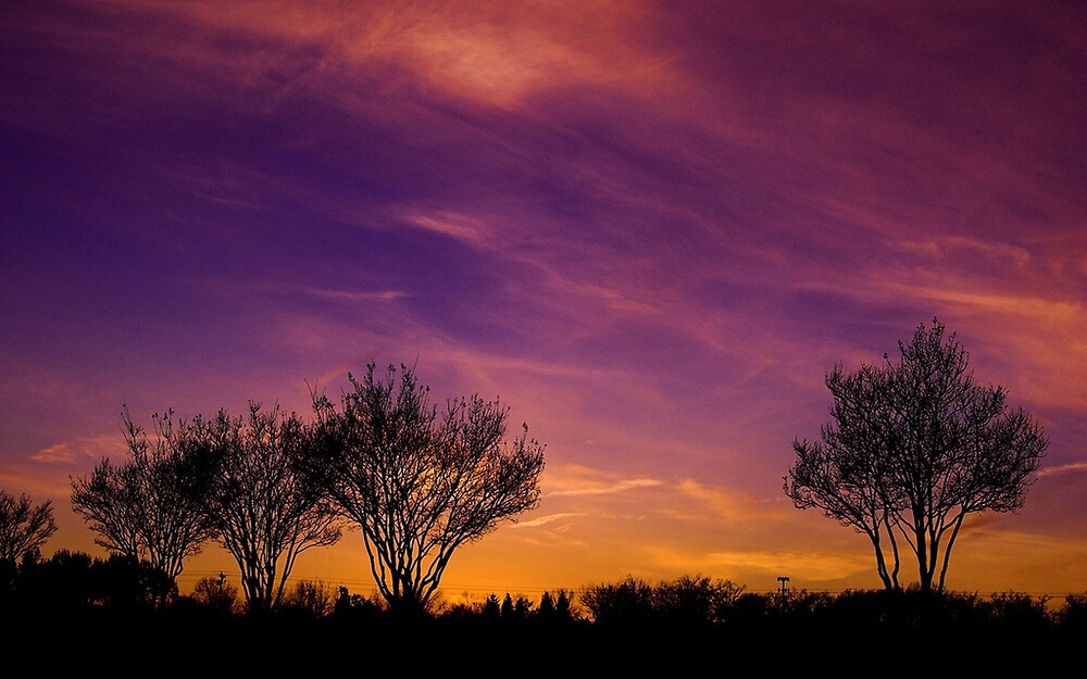 Purple Sunset by blutat2