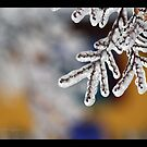 icy fingers by JetsetAphrodite