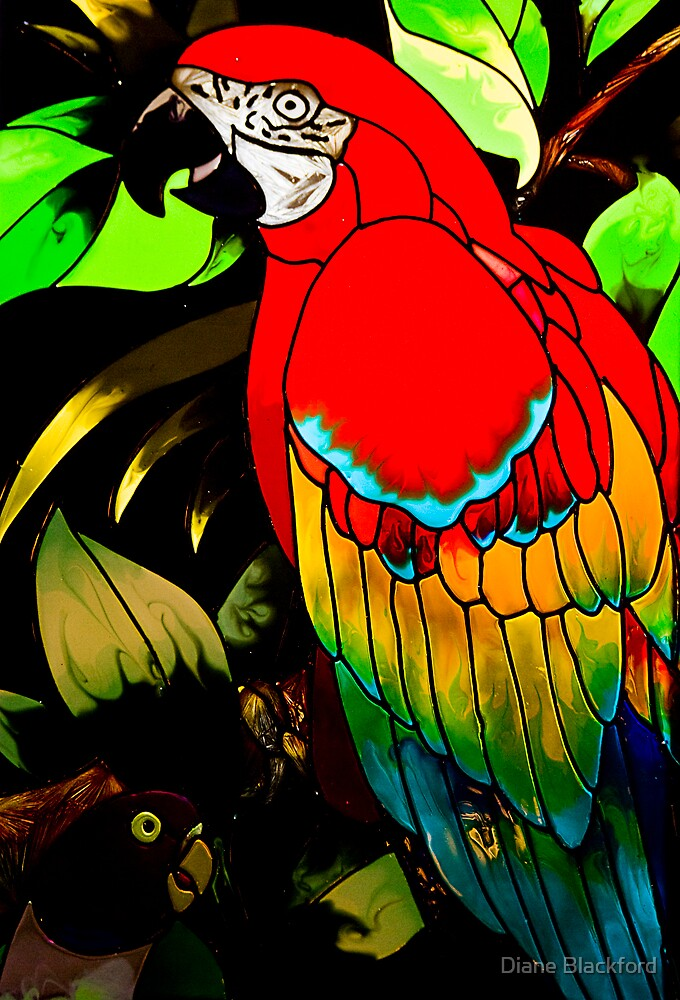 Leaded Parrot by Diane Blackford