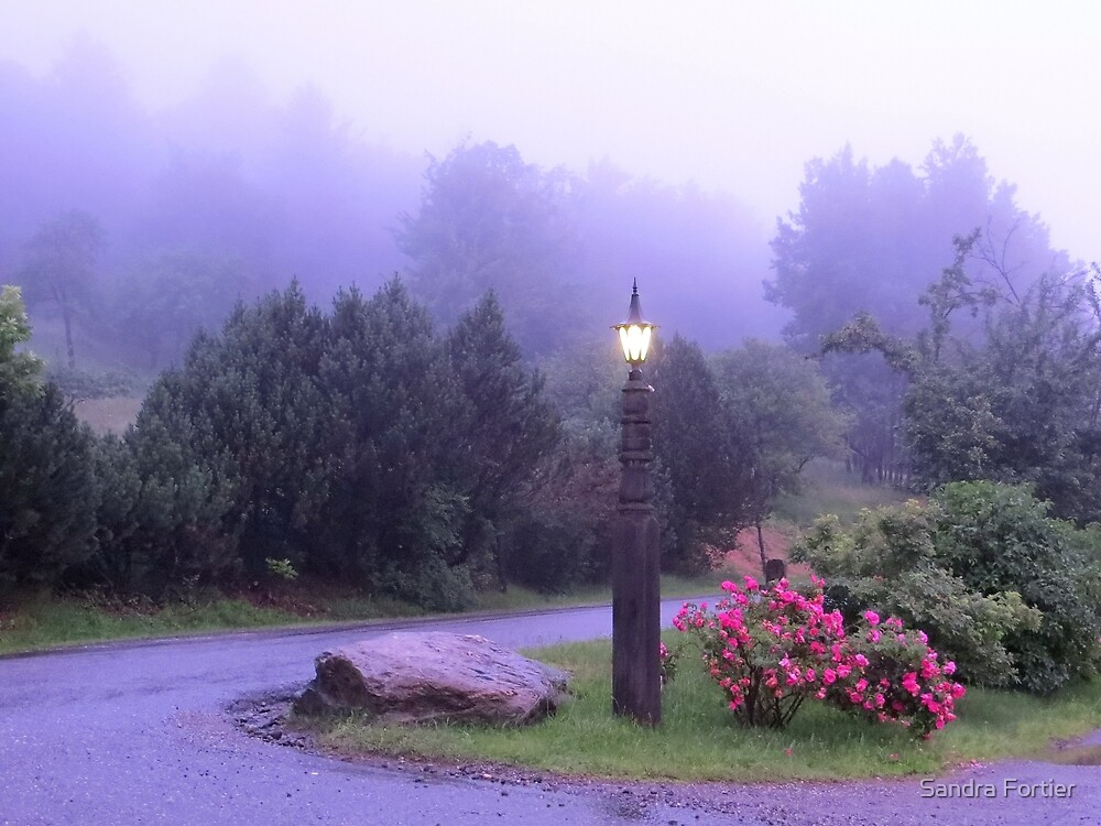 Lamplight in the Purple Mist by Sandra Fortier