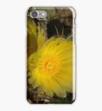 Sol y Sombra - Sun and Shade iPhone Case/Skin