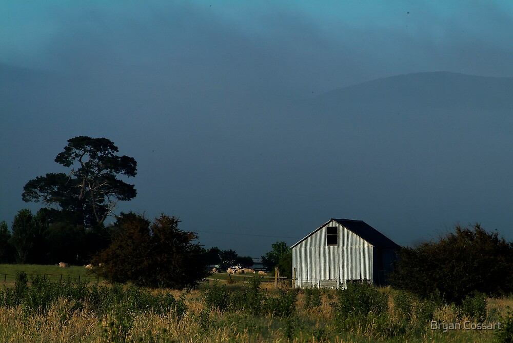 Shed in the mist by Bryan Cossart
