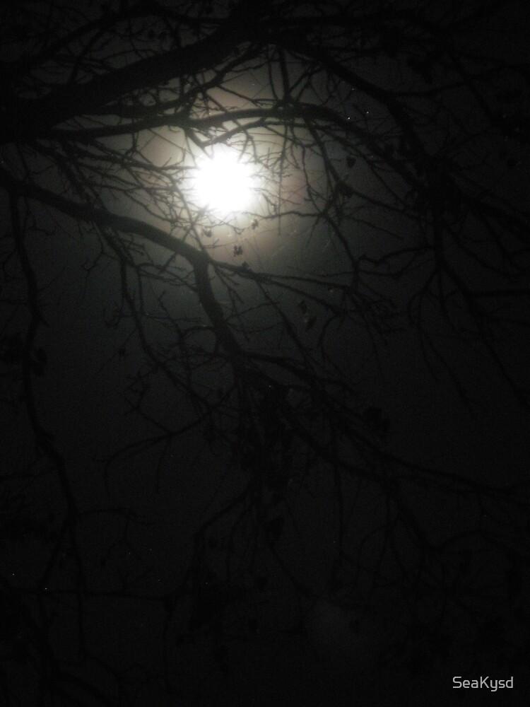 December Moon by SeaKysd