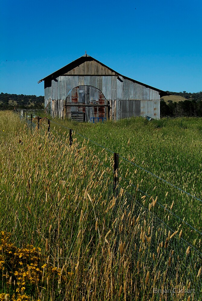 Hay Shed by Bryan Cossart