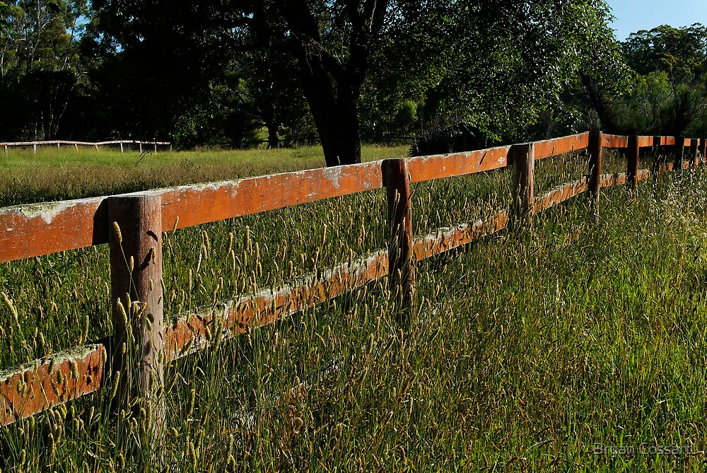 A simple fence by Bryan Cossart