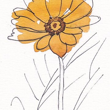 Cheerful Gerbera daisy (Gerbera jamesonii) by MareeClarkson