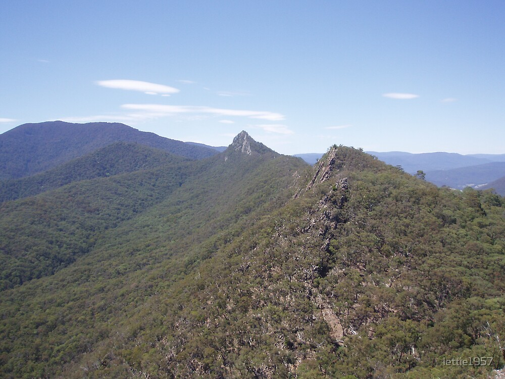 View from the South Jaw Bone - Cathedral Ranges - VICTORIA by lettie1957